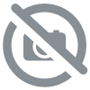 REGULATEUR DIGITAL RAIL DIN XR20D